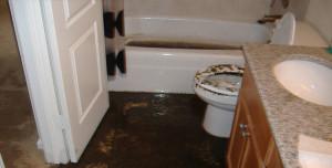 Sewage Cleanup Jacksonville FL